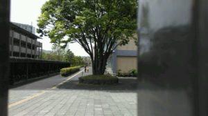 IMAG0420-640x359